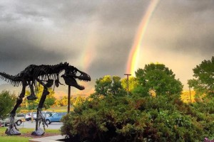 Museum of the Rockies - experience nature here : Recognized as one of the world's finest research and history museums. Renowned for our dinosaur collection, fossils, permanent & rotating exhibits, history farm & kids events.