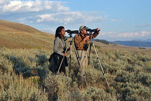 Yellowstone Safari Company - year-round wildlife