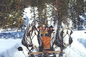 320 Ranch - Sleigh rides & dinners :: Offered through March 25 at 5:30pm, 7:00pm or 9:00pm, select from appetizer or dessert ride, just $35/adult, $20/child and 3-under FREE. On-site restaurant too.