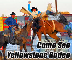 Wild West Yellowstone Rodeo : No vacation to Yellowstone is complete without seeing live rodeo. In West Yellowstone MT, the season runs June 14 - August 26. Kids = $6-8, adults only $12-15.