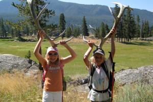 Yellowstone Safari Company - year-round wildlife