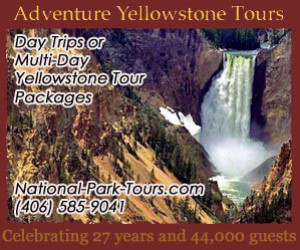 Adventure Yellowstone Year-Round Park Tours