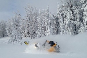 High Country Ski-Doo Rentals & ACE guided Tours