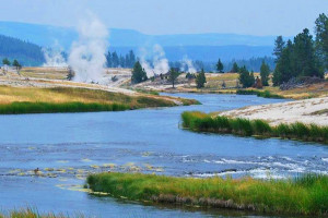 Yellowstone Alpen Guides - Summer Park Tours :: Individual and daily tours of Yellowstone, ideal for photographing wildlife, park scenery and natural attractions. Offered different times throughout each day.
