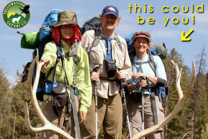 Yellowstone Safari Co. - wildlife tours