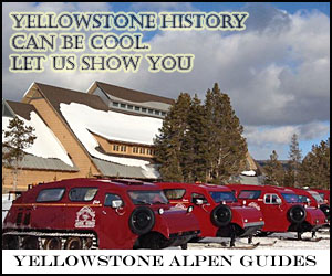 Yellowstone Alpen Guides - Park Snowcoach Tours