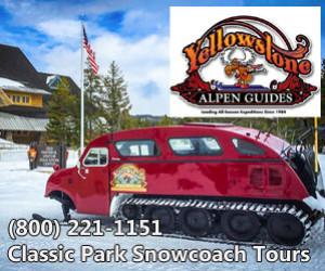 Yellowstone Alpen Guides - Park Snowcoach Tours