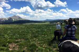 Dude Ranchers' Association | Big Sky Dude Ranches