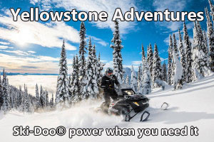 Yellowstone Adventures - sled rentals and tours