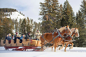 320 Ranch Sleigh Ride & Appetizers