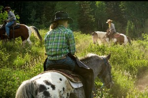 Creekside Trail & Wagon Rides