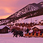 320 Ranch - Sleigh Rides & Dining