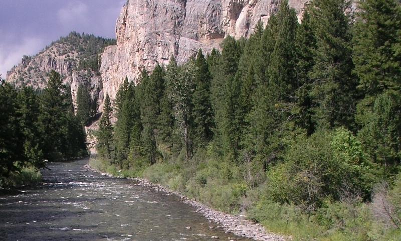 Gallatin River Yellowstone