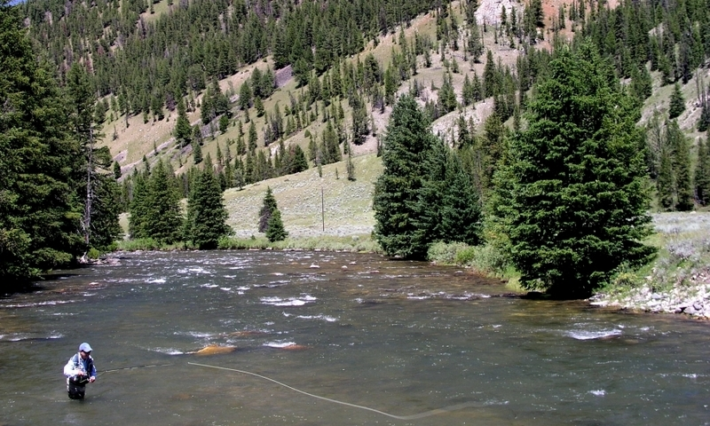 Gallatin River Yellowstone Fly Fishing Montana