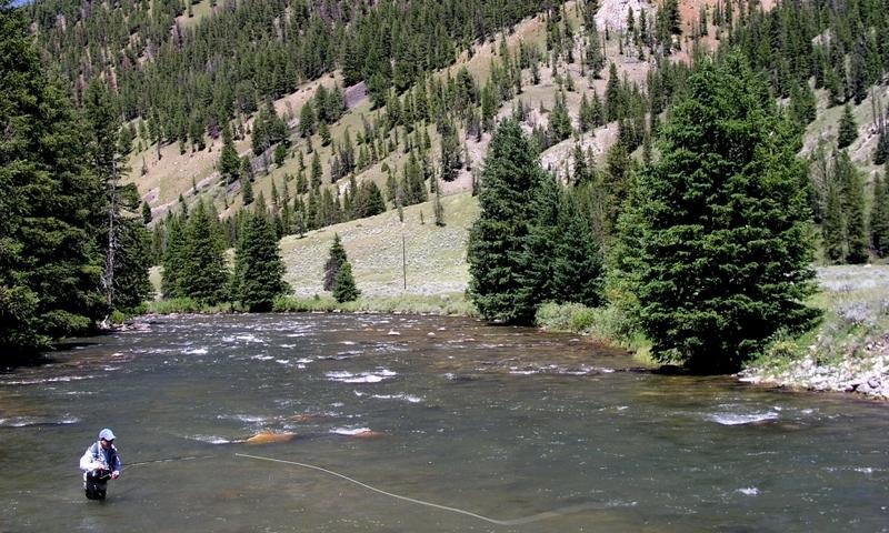 Gallatin River Yellowstone Fly Fishing Montana