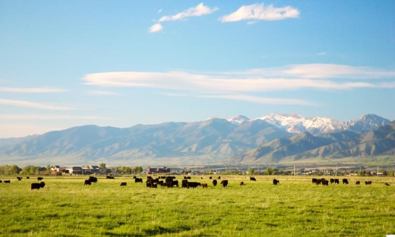 Gallatin Valley Bridger Mountains Bozeman Montana