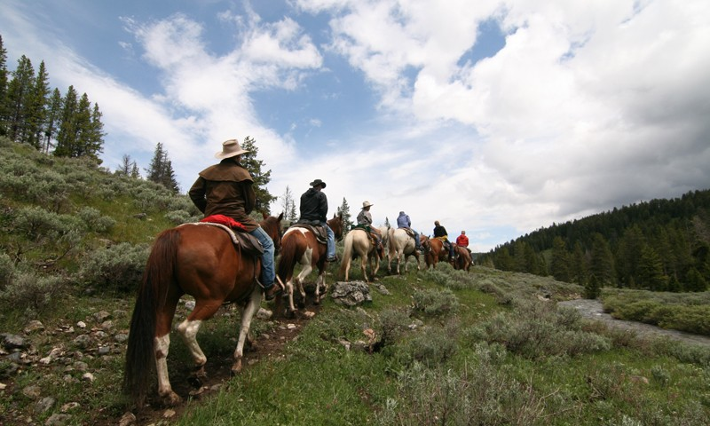 horseback riding yellowstone national park